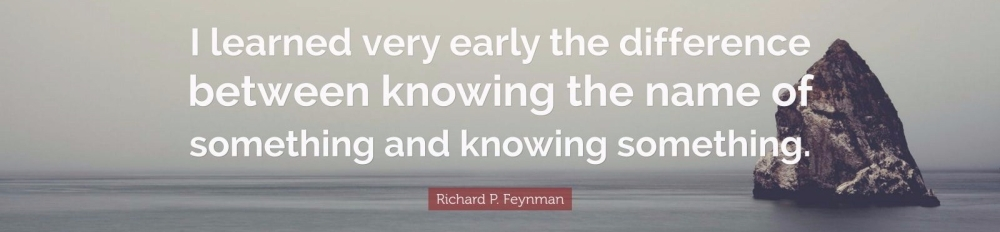 1736313-Richard-P-Feynman-Quote-I-learned-very-early-the-difference